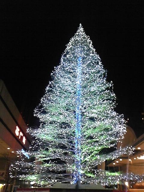 高知はクリスマス!