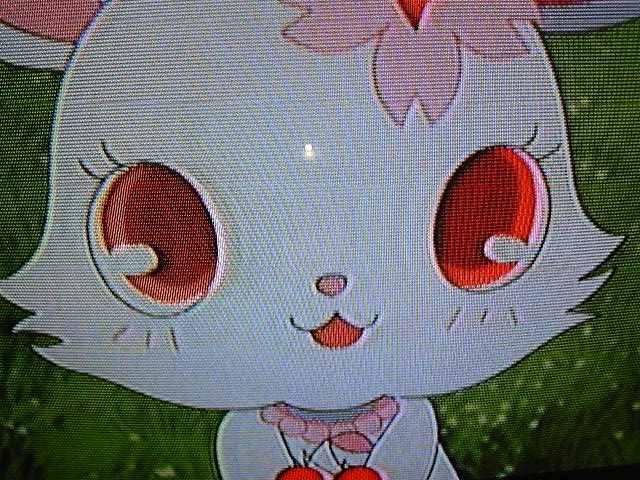 ジュエルペットアニメ!