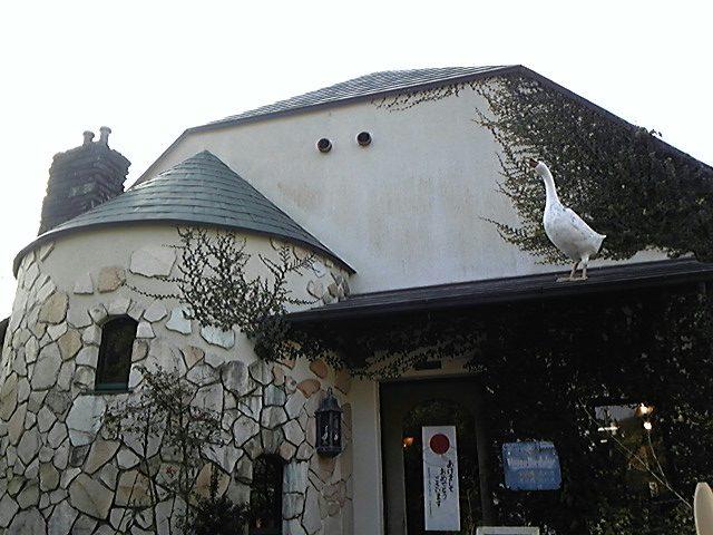 屋根の上のガチョウ!