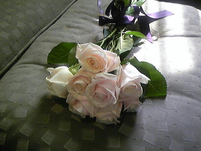 頂いたバラの花!