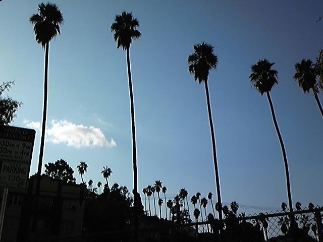 ロサンゼルスに到着!
