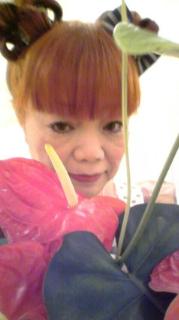 情熱の花アンスリウム!