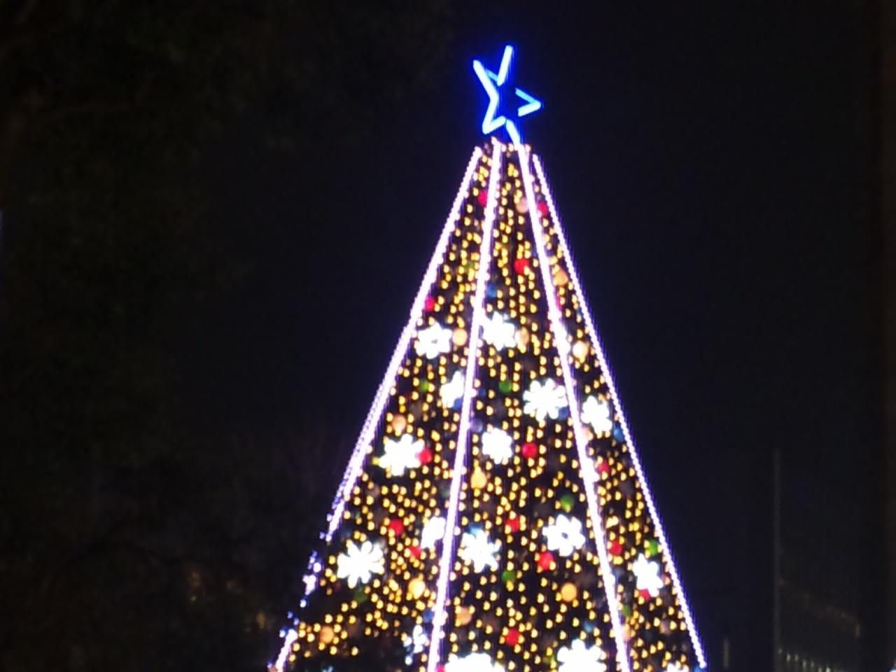 クリスマスサイン会終了!