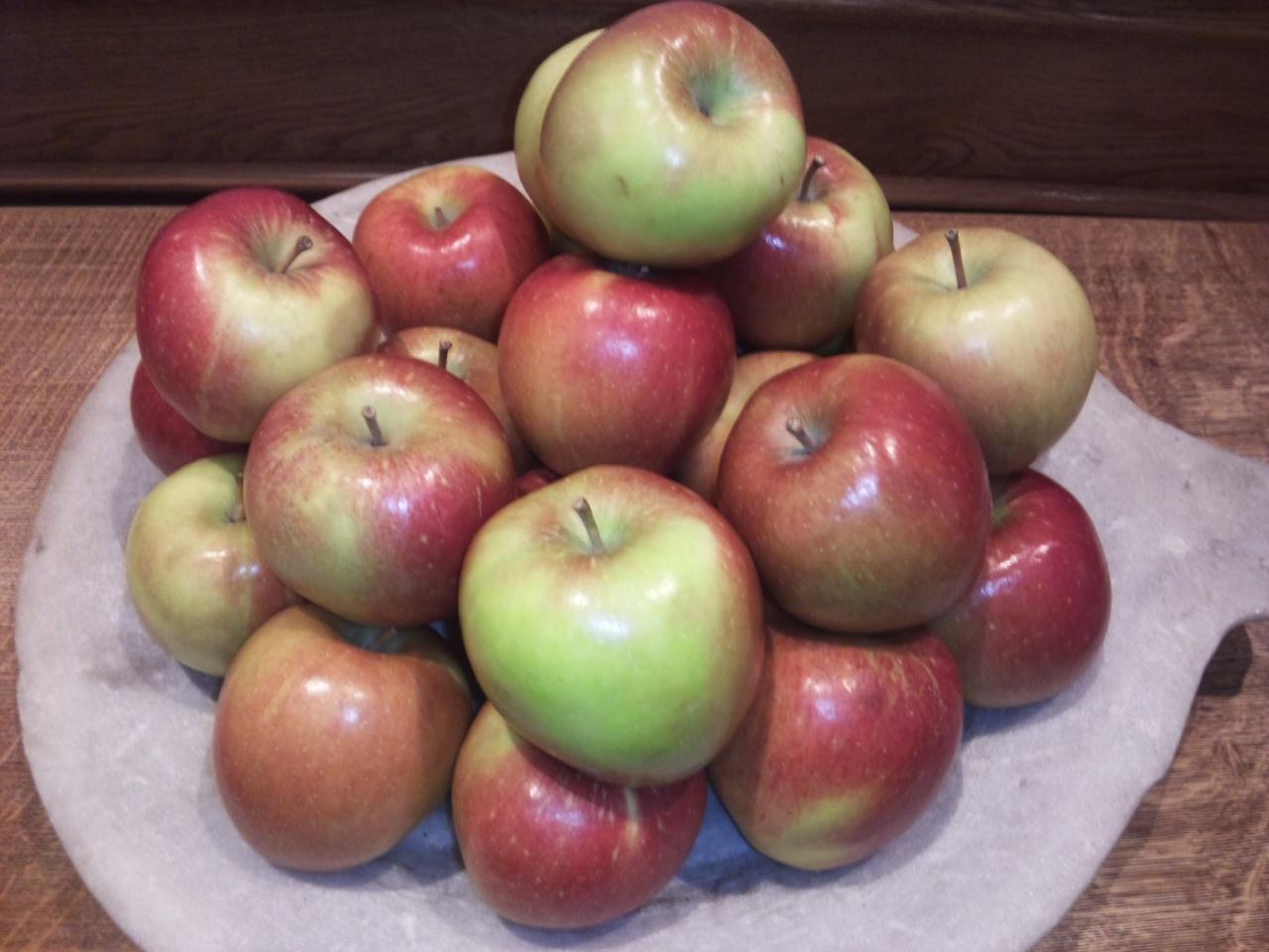 りんごの国!