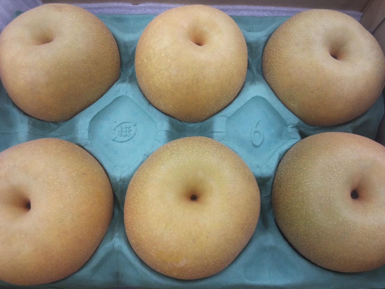 梨の季節!
